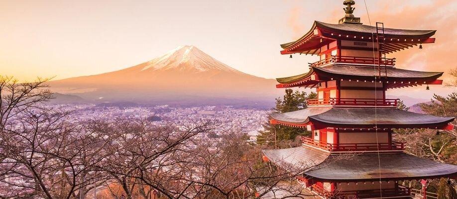 Japanese Festival Day – Bento Box order