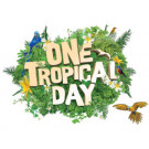 ONE TROPICAL DAY ALICE SPRINGS 2020