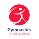 2021 Gymnastics State Championships