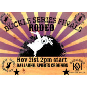 Three Sixty Rodeo Co Buckle Series Finals
