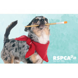 RSPCA NSW Auxiliary Cork and Canvas Fundraiser