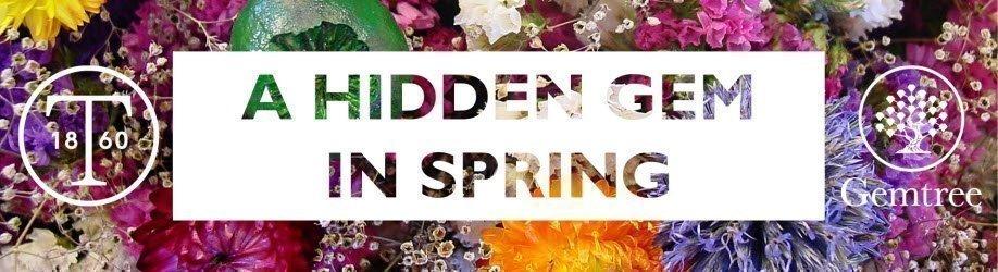 A Hidden Gem in Spring