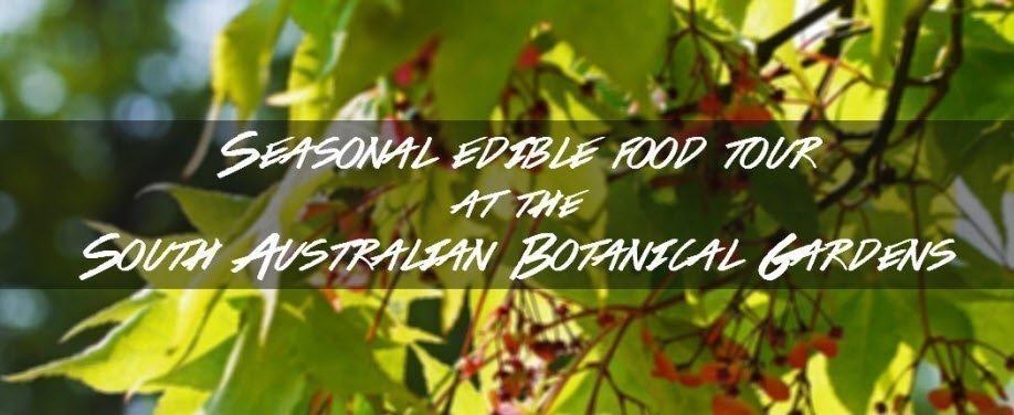 Seasonal edible food tour at the South Australian Botanical Gardens