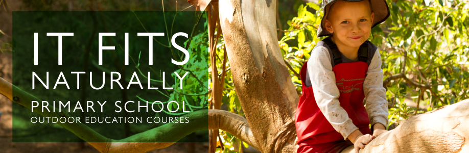 It Fits Naturally – Primary School Outdoor Education Courses