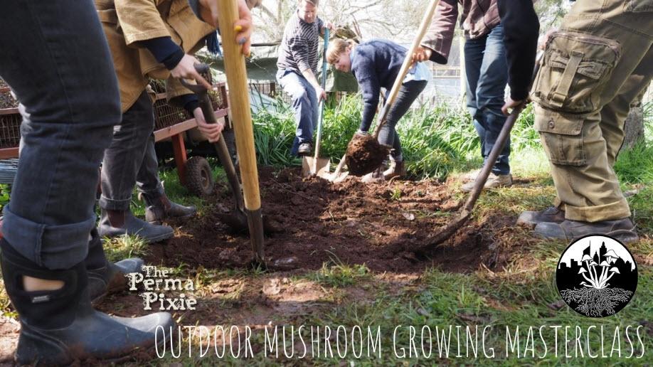 Outdoor Mushroom Growing Masterclass