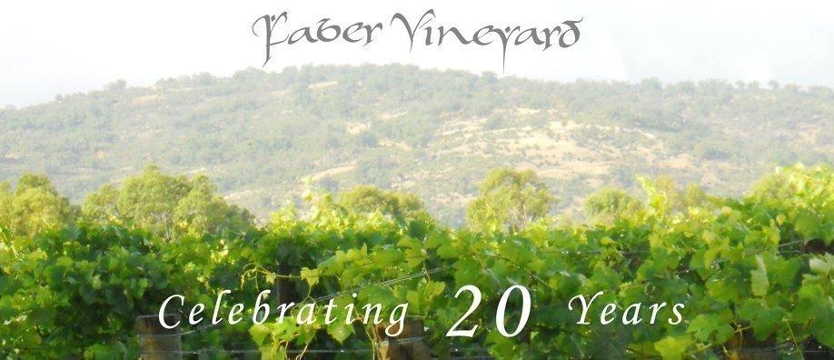 FABER'S 20TH BIRTHDAY CELEBRATIONS