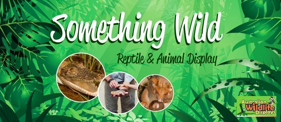 Something Wild Reptile and Animal Display – Birrong Sports