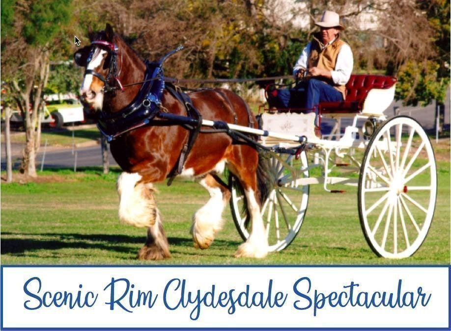Scenic Rim Clydesdale Spectacular 2019