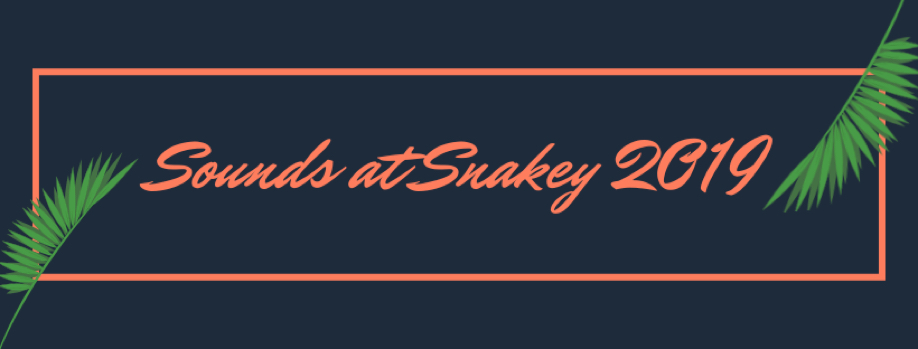 Sounds at Snakey 2019