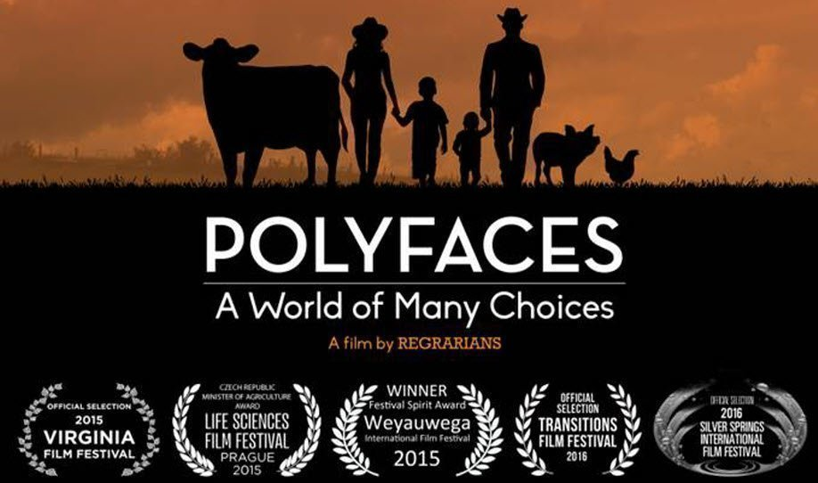 Polyfaces: A World of Many Choices Plus Q&A with Film Makers Lisa Heenan & Darren Doherty